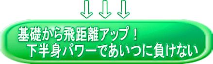ロングドライブプログラムボタン