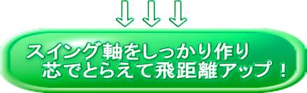 吉本理論ドライバー編ボタン