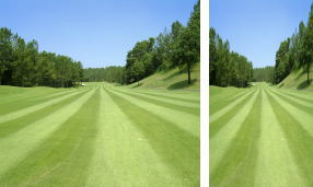 ゴルフは距離感
